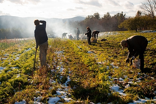 Seth Butler | Vermont Photographer | Defining Sustainability
